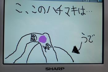 s-031.jpg